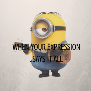 minion meme minionsallday